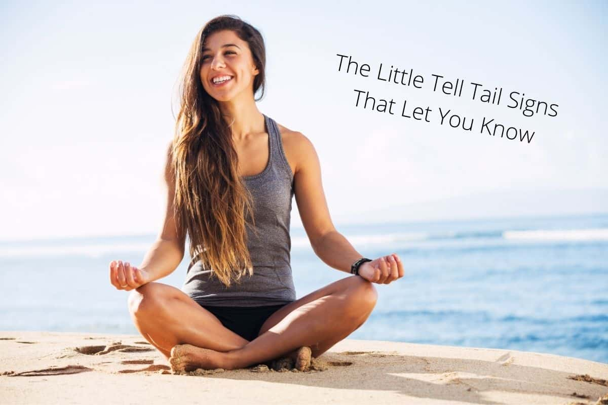 how to tell if you are meditating